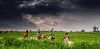 Farmers working | Representational image | commons