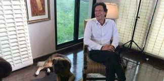 Imran Khan with 'Motu'